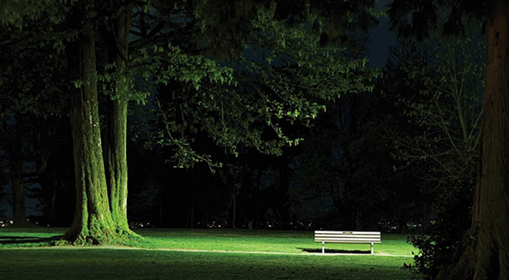 Bench under a tree - Wade Comer, Waiting on a Friend, from the series Isolation, 2020