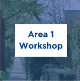 Area 1 workshop consultation summary, PDF, 5 MB