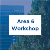 Area 6 workshop consultation summary, PDF, 7.4 MB