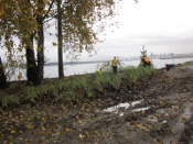 Park Board workers planting on Jericho Beach
