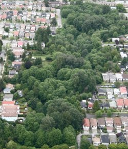 Aeriel view of Renfrew Ravine