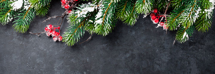 Recycling your Christmas tree | City of Vancouver