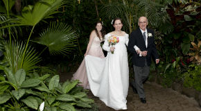 Wedding at Bloedel