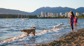 A woman stands at the shore of Kitsilano Beach while her dog plays in the water.