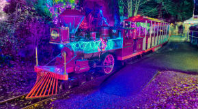 Bright Nights Christmas Train