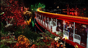 Bright nights miniature train