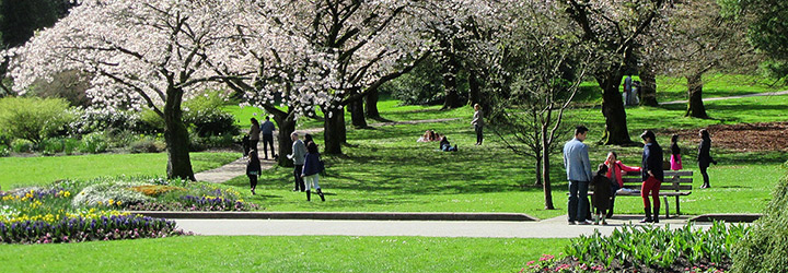 Parks and recreation events | City of Vancouver