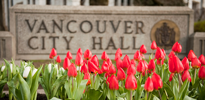 City Hall sign with tulips