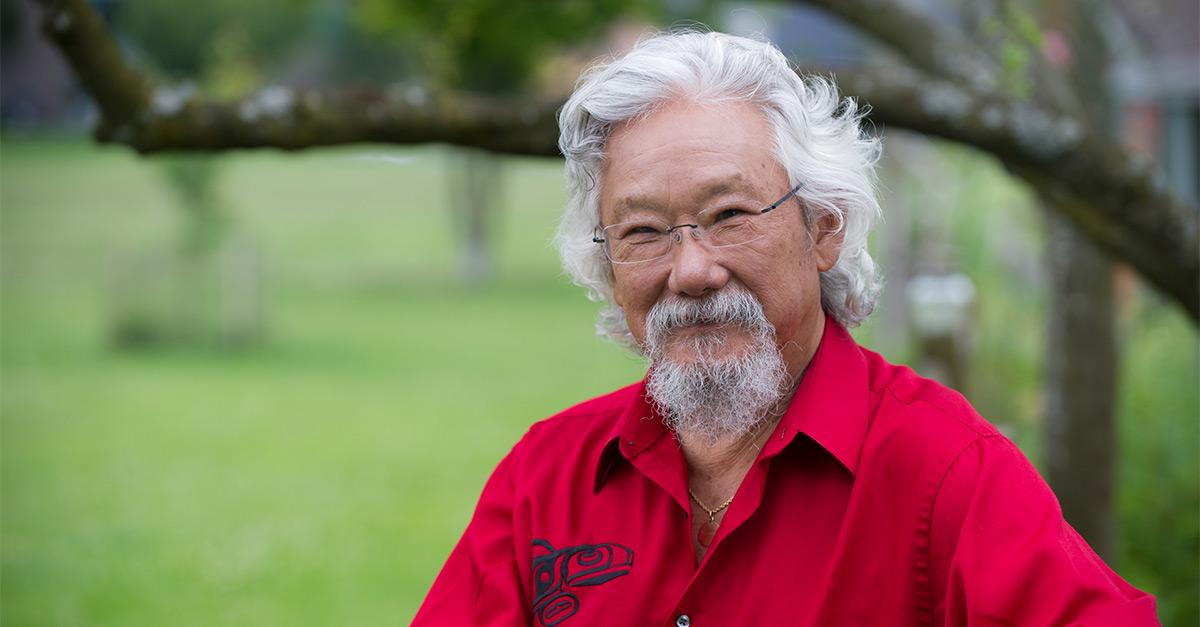 David Suzuki Careers