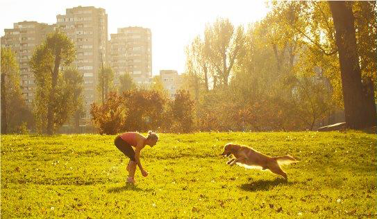 Dog off-leash areas | City of Vancouver