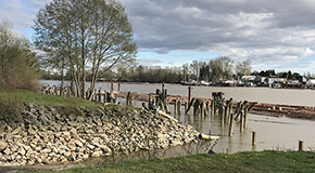 East Fraser Lands shoreline
