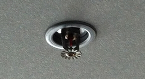 Fire sprinkler