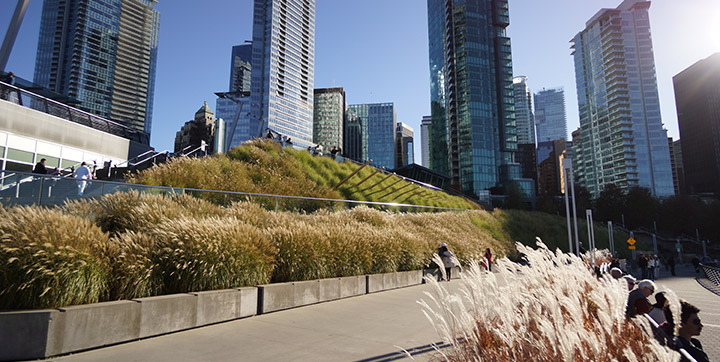 Green roof on the Vancouver Convention Centre
