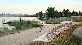 The restored area of Jericho Park brings nature back to the shoreline