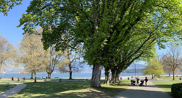 View of KitsilanoBeach Park from the Yew Street park entrance facing north. There is a shared walking and cycling path where two people with strollers are standing and talking. The path is lined by a row of trees leading to the beach and English Bay
