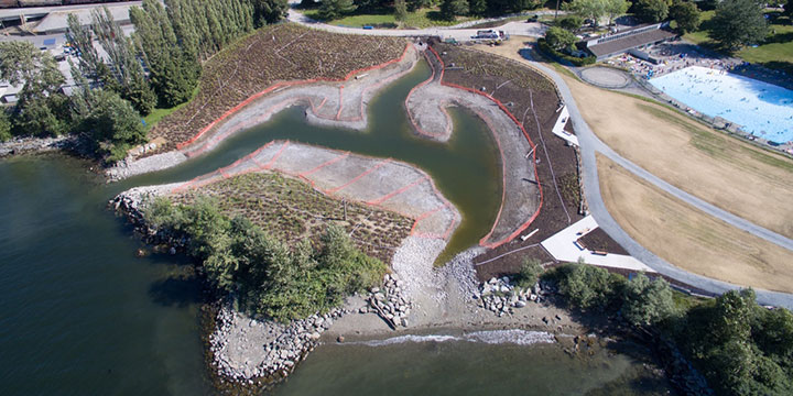 Restoration of a waterfront park by Vancouver Park Board