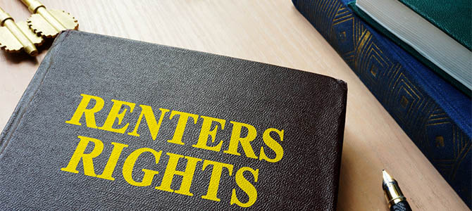 Photo of a hardcover book with title: Renters Rights