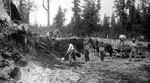 Workers digging through a First Nations midden (archaeological site) to build road through Stanley Park in 1888