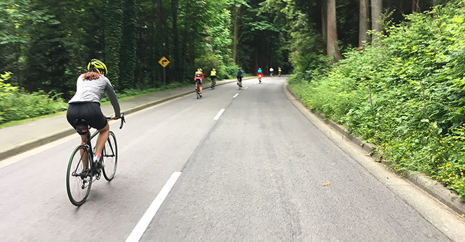 People riding bikes on Stanley Park roadways