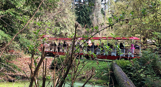 Stanley Park train going through trees