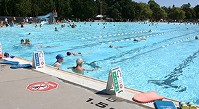 Swimming pool lane rentals