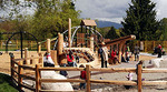 Playground at Trout Lake