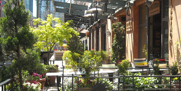 Patios along Hamilton St