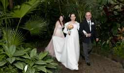 Wedding at Bloedel Conservatory