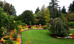 Gardens at Queen Elizabeth Park