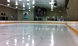 West End ice rink is located in Vancouver's West End neighbourhood.