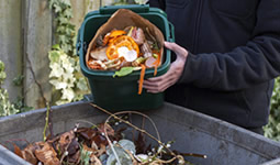 Recycle your food scraps in your Green Bin