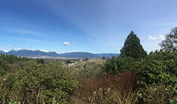 View from the top of Queen Elizabeth Park