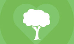 Try the #treelationships quiz to meet your tree match