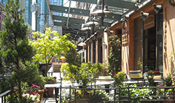 A Yaletown patio