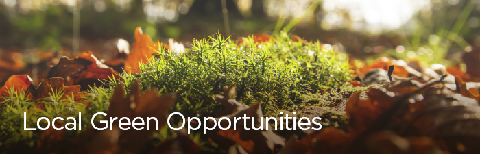 Local green opportunities