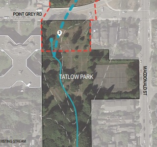 Tatlow and Volunteer Park Stream Restoration